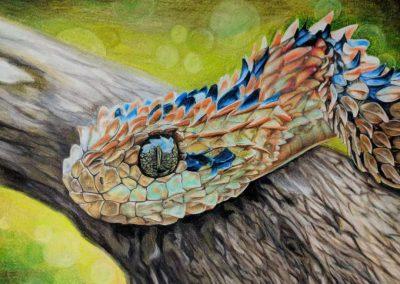 Green Forest Art Studio - Kids Art Classes - Student Award 18