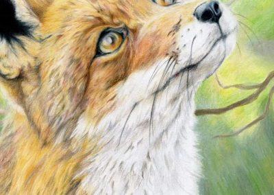 Green Forest Art Studio - Kids Art Classes - Student Award 9